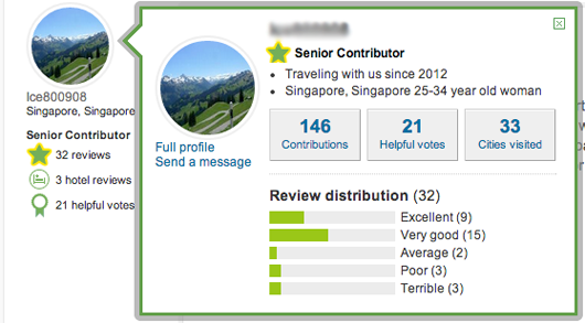 Example of TripAdvisor User